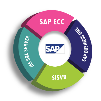 vandelay industries sap implementation As the vandelay is going with sap implementation , ics used a structured approach as per the client  situation the approach is shown in figure below: the vandelay project time estimate the vandelay project  implementation would require 18 months.